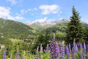 Ein wunderschöner Wanderweg entlang alpiner Straßen